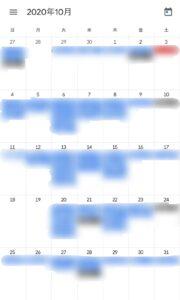 本選考対策を行った10月のスケジュール。青色が就活関連、黒色がバイト。